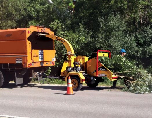 Commercial Tree Services-Opa Locka FL Tree Trimming and Stump Grinding Services-We Offer Tree Trimming Services, Tree Removal, Tree Pruning, Tree Cutting, Residential and Commercial Tree Trimming Services, Storm Damage, Emergency Tree Removal, Land Clearing, Tree Companies, Tree Care Service, Stump Grinding, and we're the Best Tree Trimming Company Near You Guaranteed!